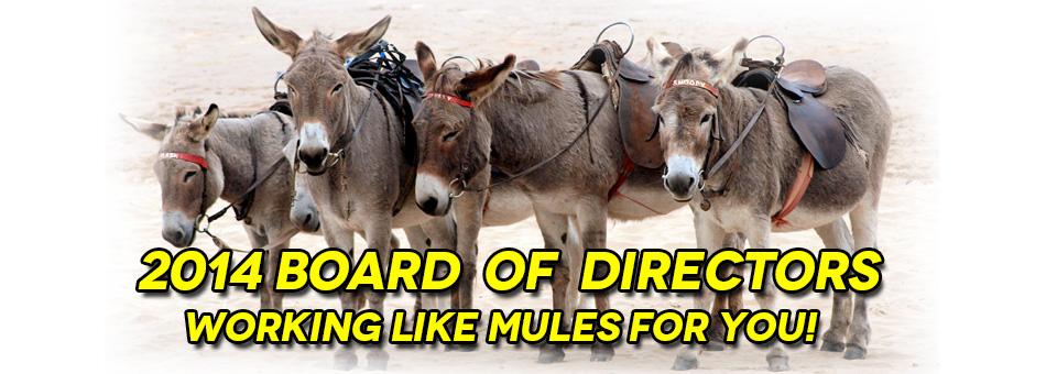 Class 5 Coalition Board Of Directors